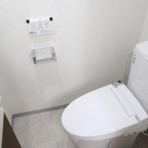 トイレ(トイレを新しくし、収納付きの手洗い器を設置しました)